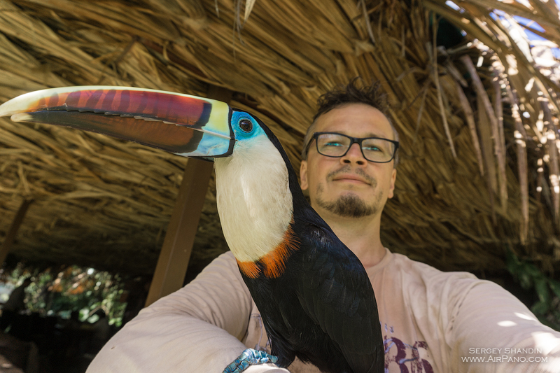 Sergey Shandin and toucan