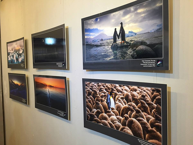 AirPano at the Global Arctic Awards exhibition