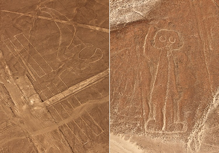 Nazca lines, the Parrot and the Astronaut