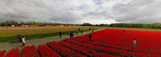 Holland. The country of tulips • AirPano.com • 360° Aerial Panoramas • 360° Virtual Tours Around the World