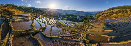 Yuanyang rice terraces #9