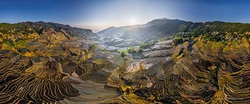 Yuanyang rice terraces #8