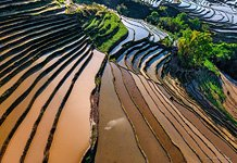 Yuanyang rice terraces #22