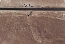 Nazca Lines. Tree and Hands