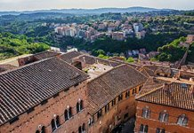 Bird's-eye view of Siena #17