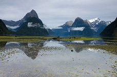 Mitre Peak, Miford Sound, Fiordland #4