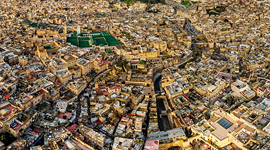Bird's eye view of Fes #3