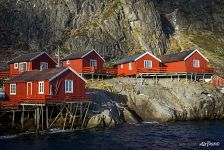 Architecture of Lofoten