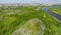 Kolomenskoye from above