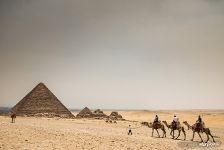 Camels and the pyramids