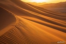 Golden Sands of the Sahara