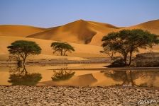 Sahara Desert. Reflection