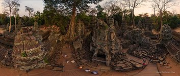 Ta Prohm temple #19