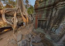 Ta Prohm temple #9