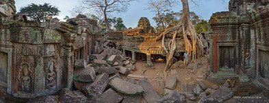 Ta Prohm temple #20