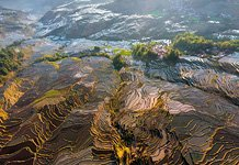 Yuanyang rice terraces #12