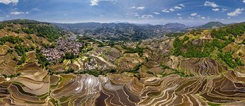 Yuanyang rice terraces #19