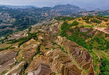 Yuanyang rice terraces #16