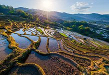 Yuanyang rice terraces #18