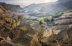 Yuanyang rice terraces #7
