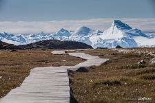 Path in Greenland