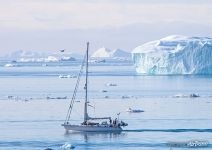 Yacht in water of Greenland