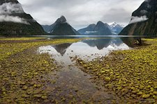 Mitre Peak, Miford Sound, Fiordland #3