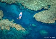 The Great Barrier Reef #32
