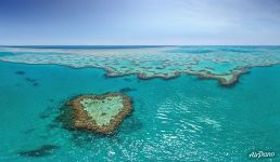 The Great Barrier Reef #27
