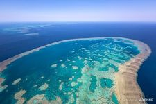 The Great Barrier Reef #35