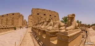 Western Processional Way. Avenue of Ram-headed Sphinxes. Karnak Temple