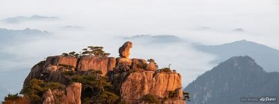 Stone Monkey Gazing Over the Sea of Clouds