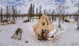 Near the chum of Nenets people