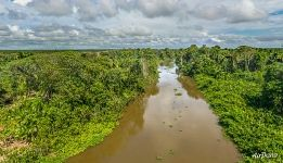 Delta of Orinoco River