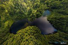 Over the forest lake, Spamberg mount. Sakhalin Island, Russia