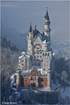 Neuschwanstein Catle in the winter #5