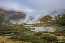 Valley of Geysers, Kamchatka #13